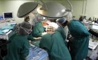 trasplante organos