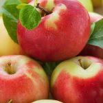 Preparación de dulces de frutas