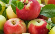 dulces de frutas