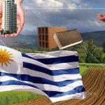 Oportunidades de negocio en Uruguay