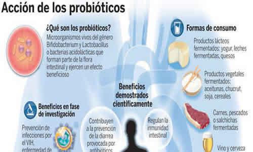 probioticos-3