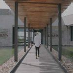 La increíble experiencia de visitar una bodega de vinos Garzón
