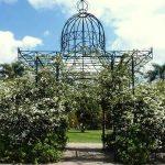 Características del alquiler de propiedades en El Prado Uruguay