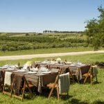 Disfrutar del turismo enológico Uruguay, un placer para todos los sentidos