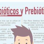 Los Prebióticos y los probióticos aliados de nuestro bienestar