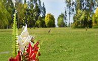 Cementerio Parque Jardín Los Frenos: un lugar para realmente descansar en paz