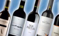 Top de los vinos uruguayos de calidad internacional