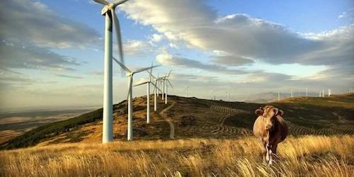 energiare novable Uruguay2