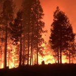 Incendio forestal en la costa oeste de EE.UU. acaba con la vida de seis personas