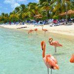 Curazao la isla del Caribe con más lugares para visitar
