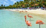 Curazao Caribe